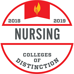 Online Masters in Nursing Education
